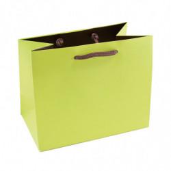 Sac pelliculé mat bicolore vert anis/marron 190g