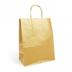 Sac kraft shopping or T1